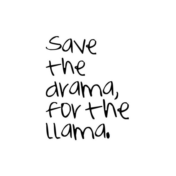 Llamas Quotes Inspirational: 179 Best Images About ♥ᴡ ᴏ ʀ ᴅ S♥ On Pinterest