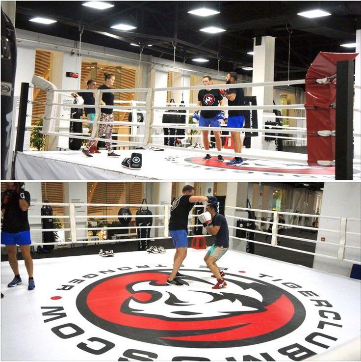 Физика исследует на прочность материалы, а бокс – человека.  Тренировки по боксу с Чемпионкой Европы Матрёной Вячкиной. Тренируйтесь с лучшими - становитесь лучшими!  #тайгерклуб #tigerclub #tigerclubmoscow #вегаскрокуссити #muaythai #тайскийбокс #бокс #boxing #джиуджитсу #bjj #грэпплинг #grappling #дзюдо #самбо #sambo #борьба #кроссфит #crossfit #mma #мма #sport #спорт #рукопашныйбой #ножевойбой #единоборства #спортивнаямосква #moscowsport #тайгермосква #tigermoscow
