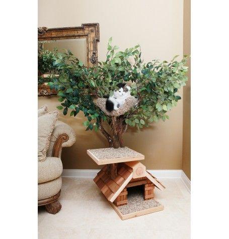 Sapling Lifelike Small Cat Tree House ~ pity they don't seem to ship to Hawaii.