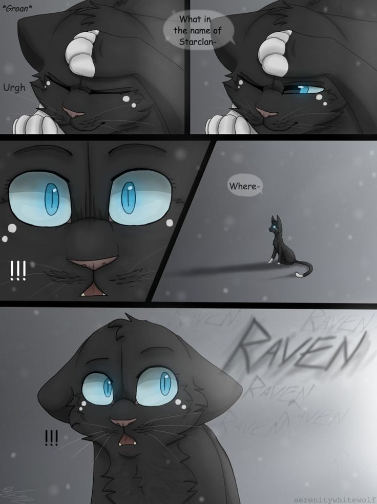 Warriors- Eyes of a Raven- Page 46 Next:serenitywhitewolf.deviantart.c… Previous:serenitywhitewolf.deviantart.c… ooo ooo im actually pleased with how this page came out :3...