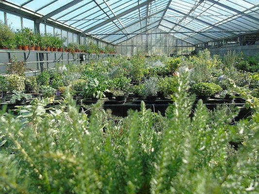 Azienda Agricola Il Rosmarino ha scelto webee