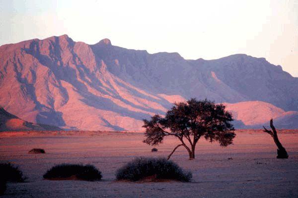 Namibia Holidays Image 1
