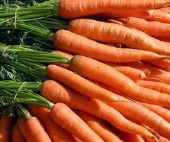Fingerplays & Action Rhymes: Carrots