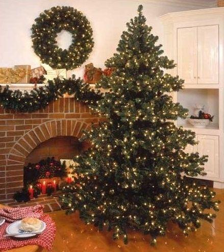 53 best CHRISTMAS TREES Lakeland, FL images on Pinterest ...