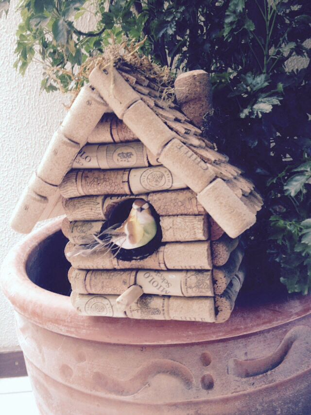 Cork birdhouse, made by me.