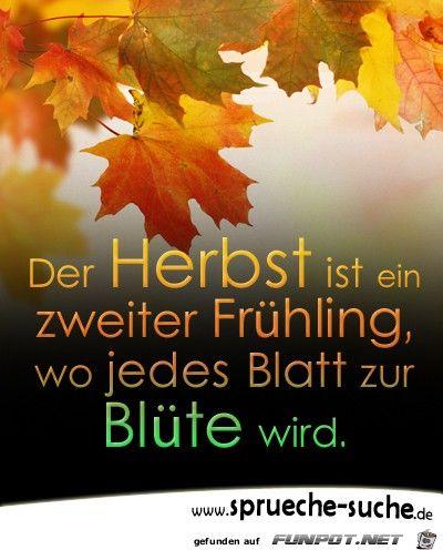 42 besten Herbst Bilder auf Pinterest  Herbst Lustiges und Php