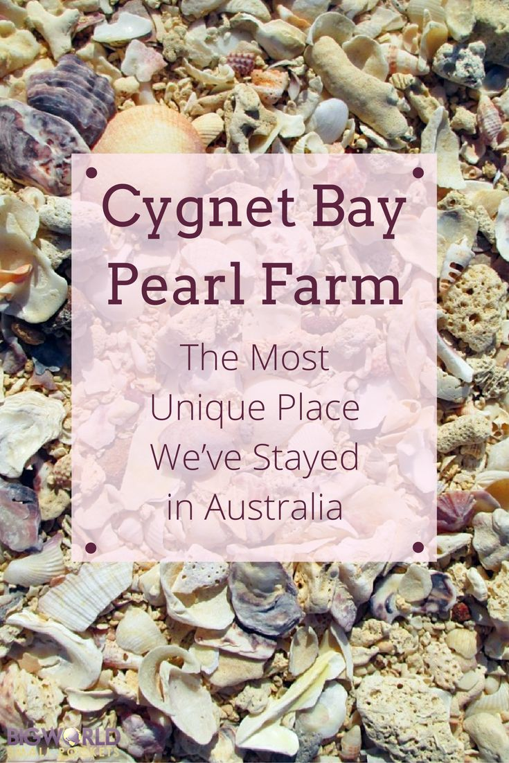 Cygnet Bay Pearl Farm : The Most Unique Place We've Stayed in Australia {Big World Small Pockets}