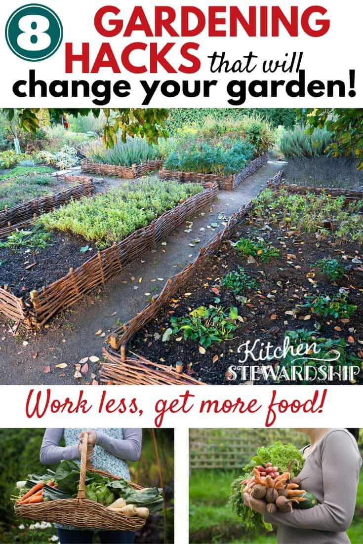 Lazy Gardening 101 Grow Your Own Food With Minimal Effort