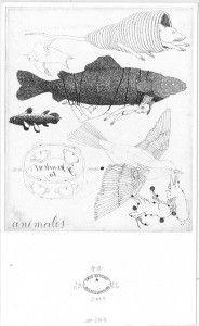 Sin título No. 243. 2007. Aguafuerte. P/A. 17 x 10 cm
