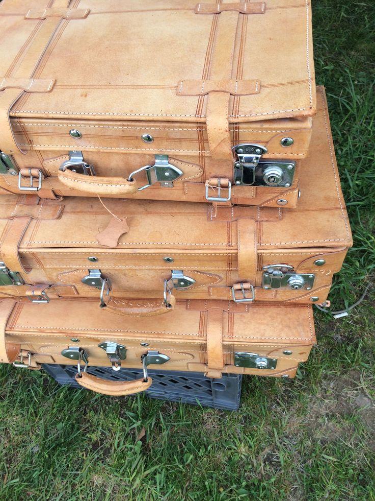 amazing luggage set!