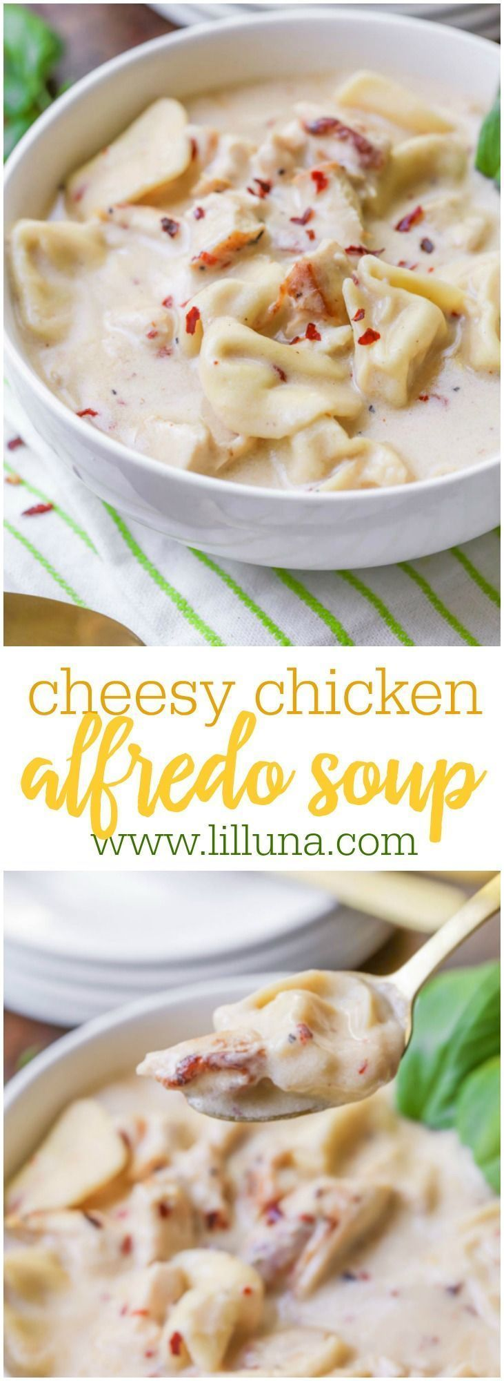 Cheesy Chicken Alfredo Soup