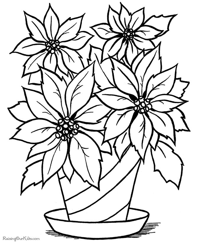christmas flower printable coloring page - Pictures Of Coloring