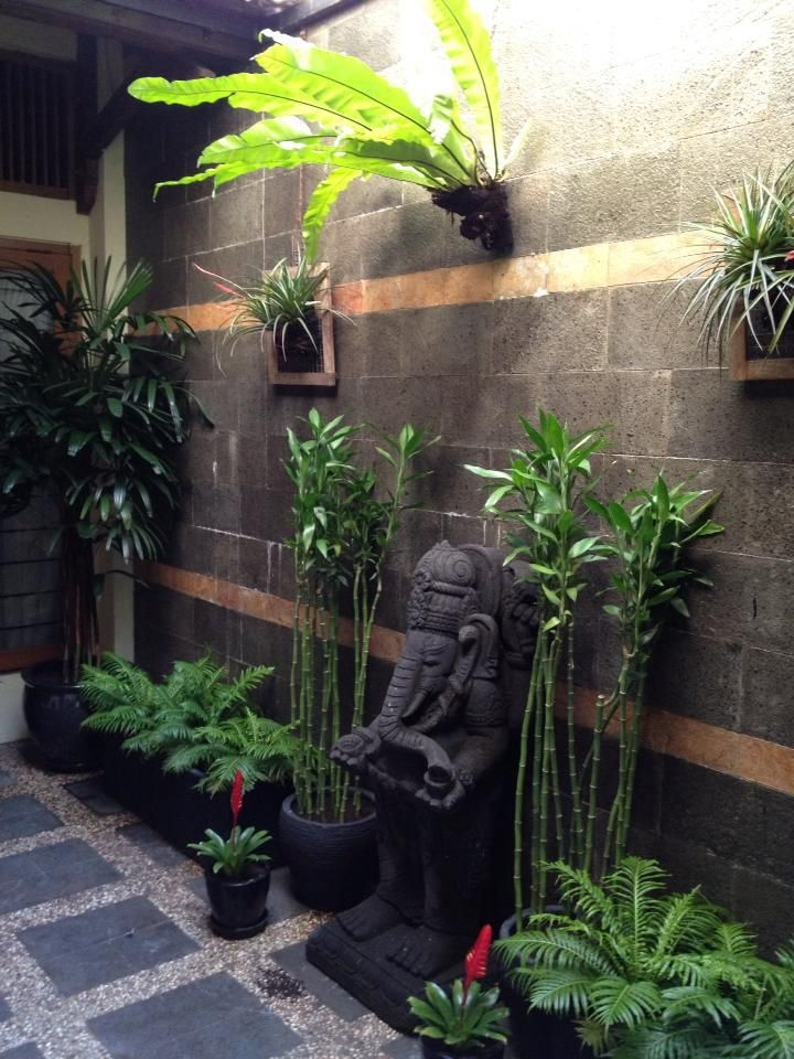 Tropical courtyard indonesia green terrace pinterest for Tropical courtyard garden design