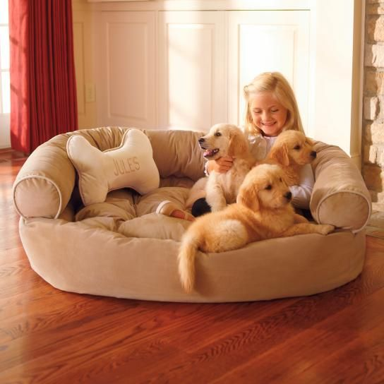 (XL- Chocolate) Our best-in-class Comfy Pet Couch is crafted as well as sofas designed for people. Ultra-plush, this pet couch offers unsurpassed support that ordinary dog beds can match. We also toss in a bone pillow that can be personalized. Now that a treat any dog would love! Inside, a 1-1