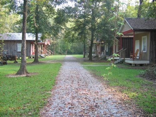 Cajun Country Louisiana: Cajun People, Cajun Roots, Cajun Cajun, Cajun Recipe, Cajun Country And, Cajun Food