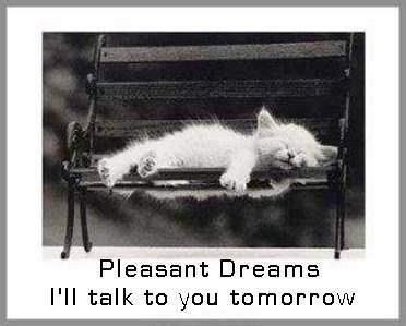 good night quotes cute quote night cat dreams sleep kitten good night