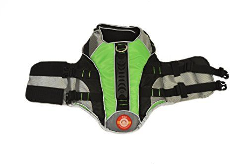 Protect Me Alert Series Dog Life Vest with Adjustable Straps Green Extra Small * Read more reviews of the product by visiting the link on the image.Note:It is affiliate link to Amazon.