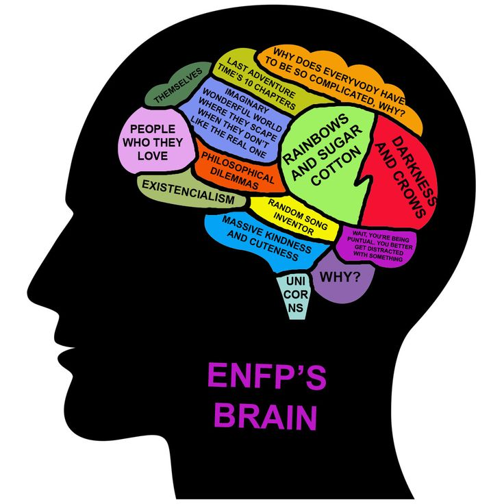 """ENFP's Brain... I don't know about the """"Rainbows & sugar cotton"""" part, but other than that, it's kinda like my brain."""