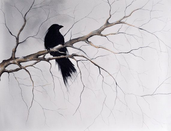 ORIGINAL Raven Drawing, Crow Art, Charcoal Gothic Dark ...