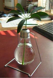 Repurpose and Recycle Your Old Bulbs!