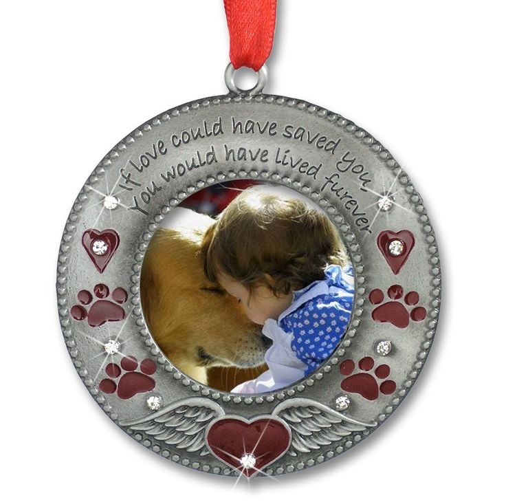 In Loving Memory Pet Ornament - Pet Memorial Photo Ornament - Furever in my Heart - Red Hearts with Angel Wings and Paw Prints - Pet Sympathy Gifts - Loss of a Pet
