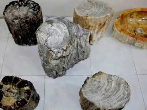Our Petrified Wood products are made from reclaimed tropical hardwoods that were buried in an ancient eruption which happened during prehistoric time million...