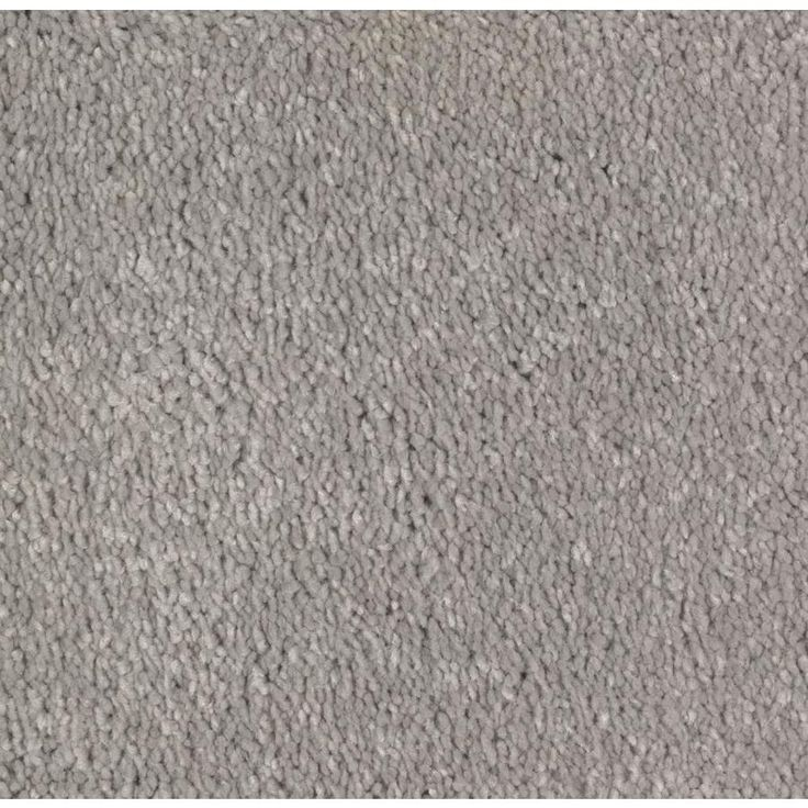 STAINMASTER Essentials Decor Flair Winter Calm Plush Carpet Sample