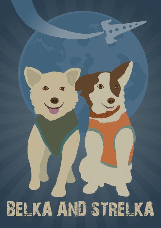 Открытки собаки белка и стрелка, открытки армия виды