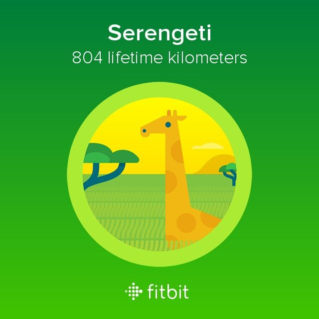 how to change miles to kilometers fitbit alta