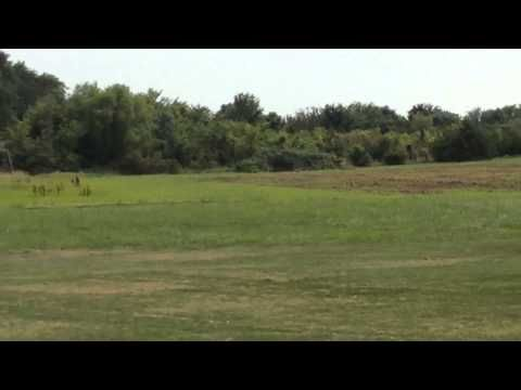 Fourth of July Tannerite Explosion with Unexpected Ending.
