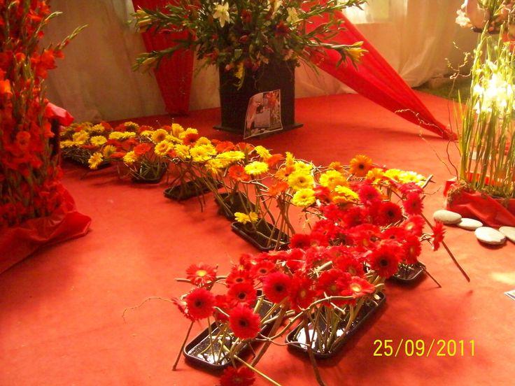 Escobar Fiesta de la flor
