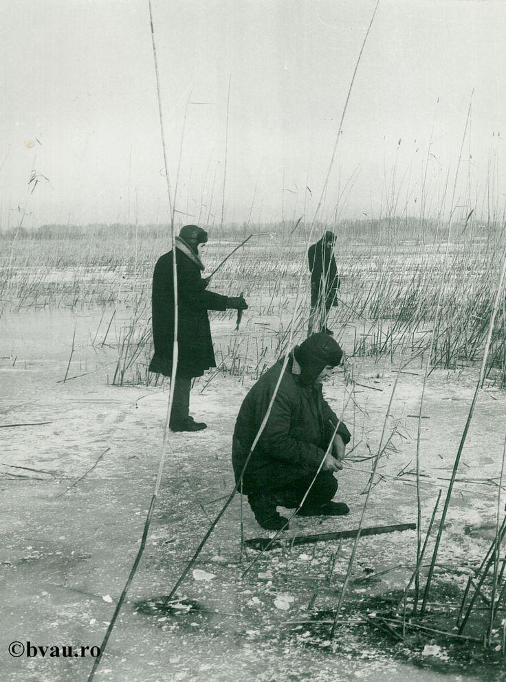 """Pescuit pe sub gheaţă, anul 1968, Galati, Romania. Imagine din colecțiile Bibliotecii Județene """"V.A. Urechia"""" Galați."""