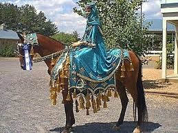 Image result for diy arabian horse costume breyer