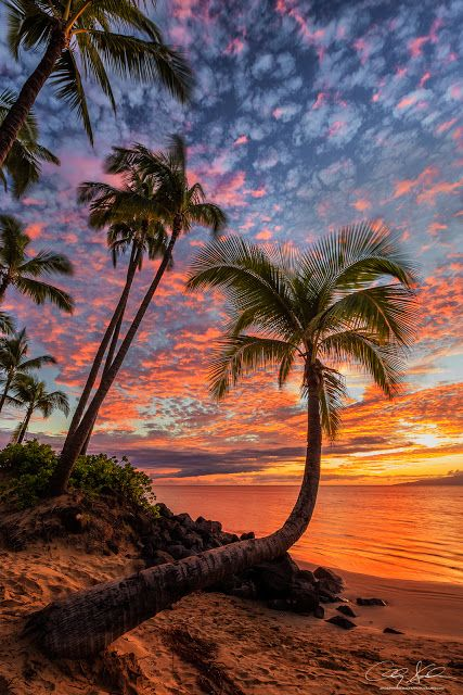 Sunset at Maui, Hawaii ~ Marvelous Nature