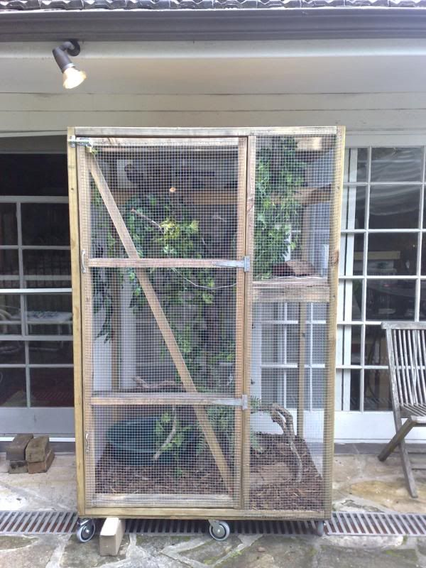 iguana cage ideas | Reptile Cages 3ft                                                                                                                                                                                 More