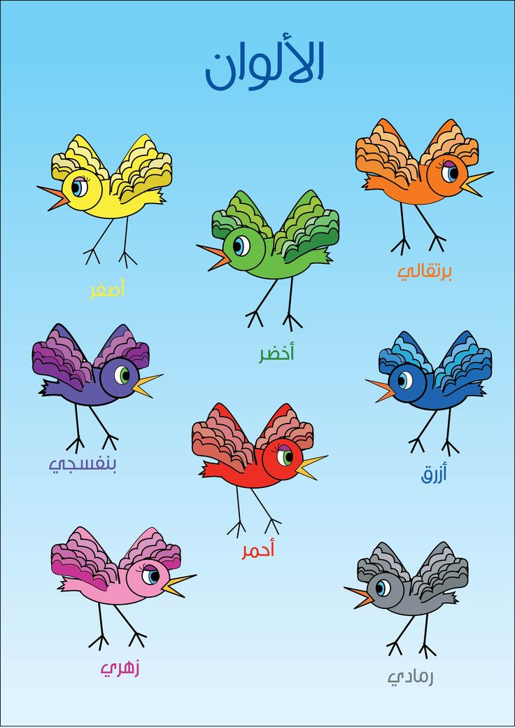 This is another poster i made using birds , about colors in arabic for kids .