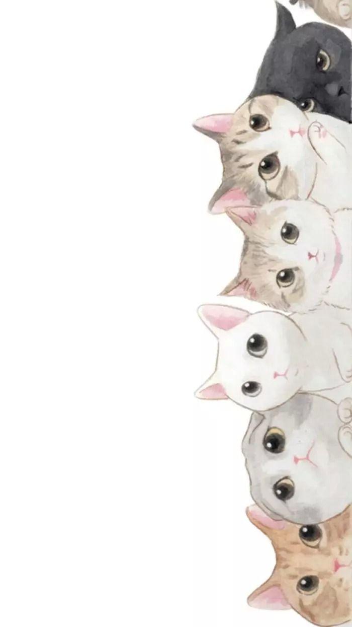 猫咪萌萌哒~~~壁纸_热壁纸_微信易读
