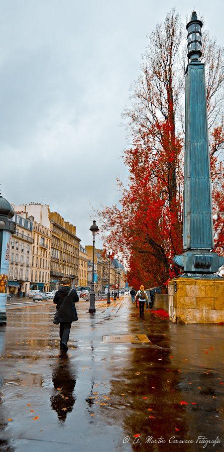 In the rain of Autumn in Paris