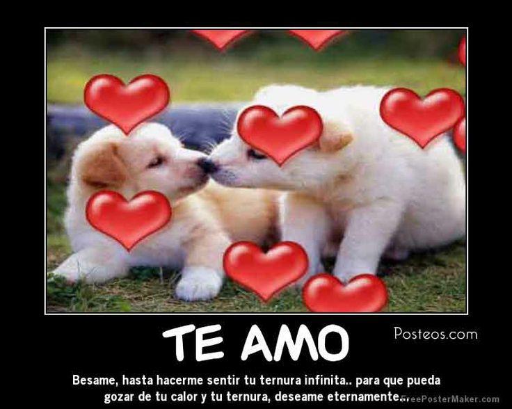 Amor en linea en español