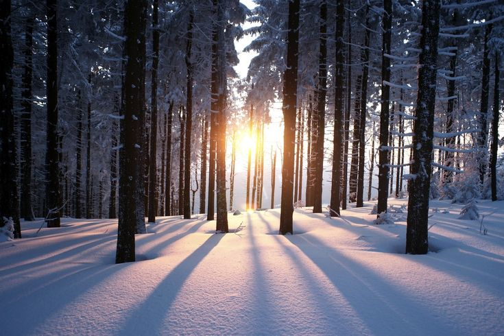 From when it happens to why – and everything in between – here's your crash course on the shortest day of the year.