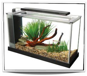 Fluval Spec V Aquarium 5 gal