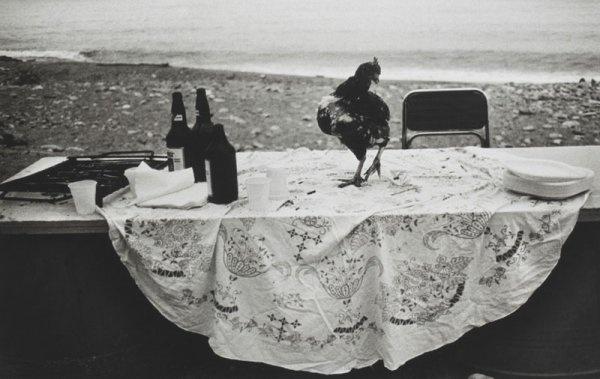 Letizia Battaglia: Nella spiaggia dell'Arenella la festa è finita, 1986