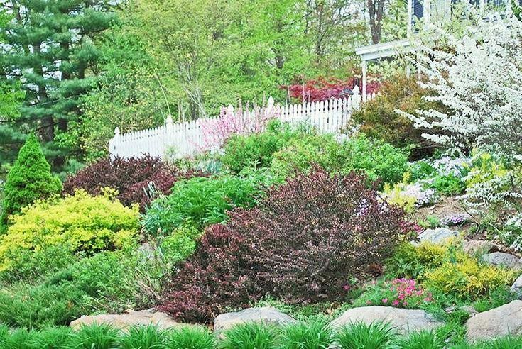 How To Landscape A Sloped Yard Hillside Landscaping Sloped Garden Landscaping A Slope