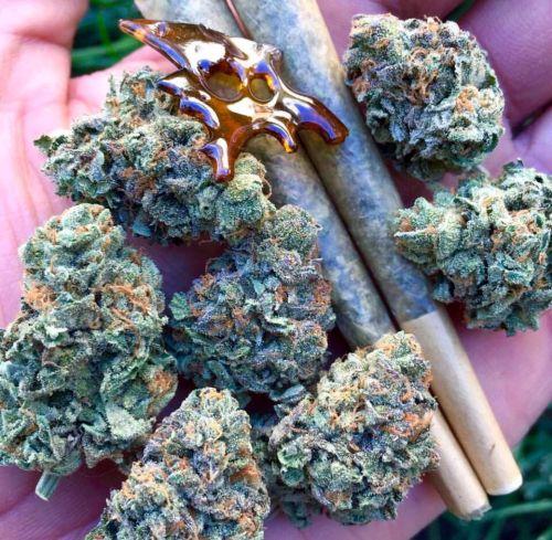 skunktastic: Weedend starts Stay high guys