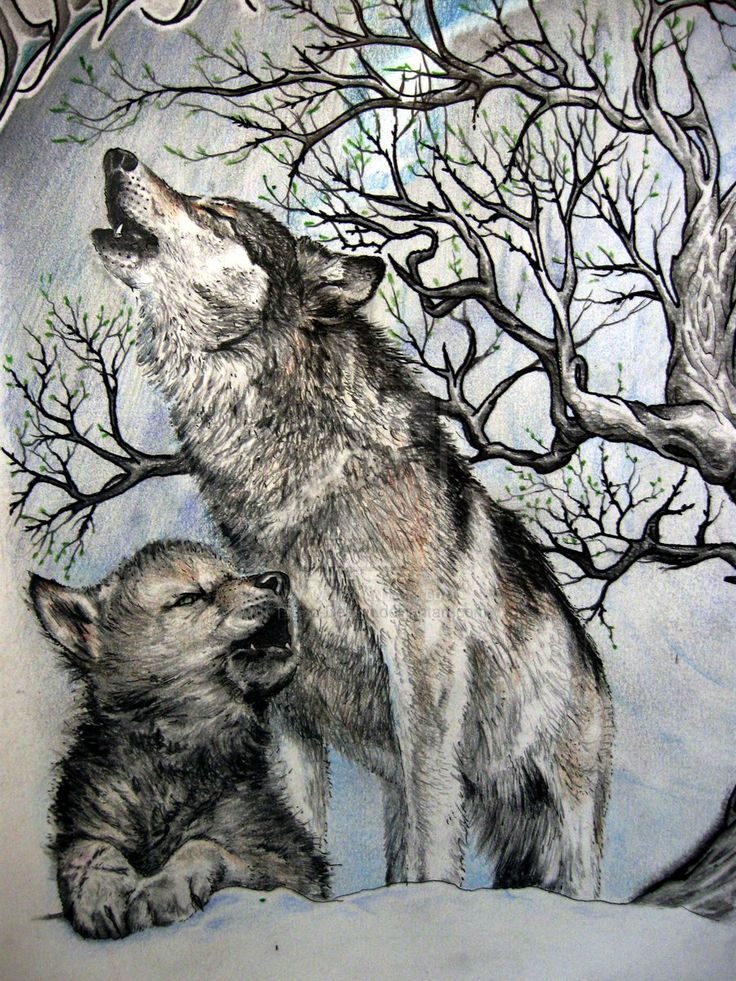 tattoos of baby wolves battle of two wolves detail by tattoo design designs interfaces tattoo. Black Bedroom Furniture Sets. Home Design Ideas