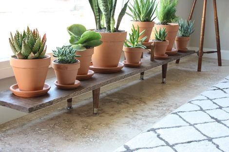 You could make this plant stand with a scaffolding board and legs from broken furniture
