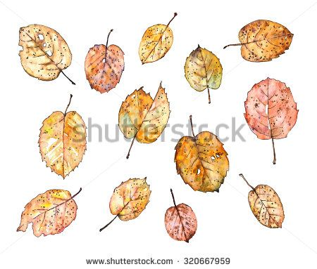 Rusty leaves - watercolor&inc hand-painted set