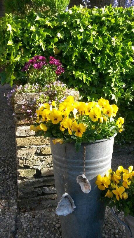 Mooi in de tuin van Torenzicht