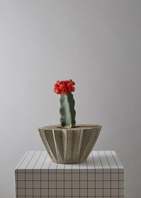 Concrete Succulent/Cacti Plant Pot by geofleur on Etsy
