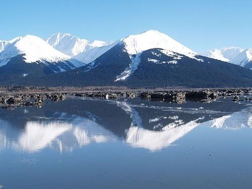 Alaska #Alaska #travelAlaska Travel, Cant Wait, Alaskan Cruises, Buckets Lists, Favorite Places, Beautiful Places, Places I D, Alaska Alaska, Alaska Cruises